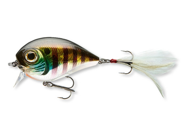 Belly Dog Chrome Perch 70 mm.