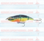 Little Temptation Blue Gill SBG