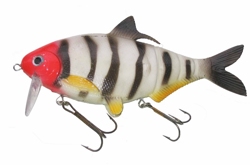 "Musky Innovations Shadclone 10"" Red Head  C-Bra"