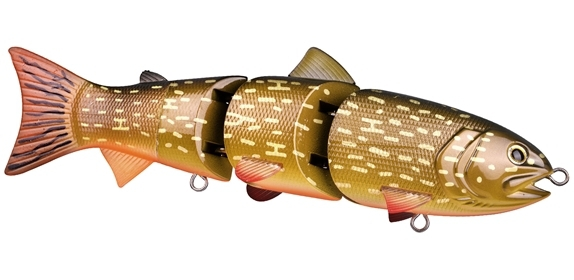 BBZ1 6 inch Orange Belly Pike